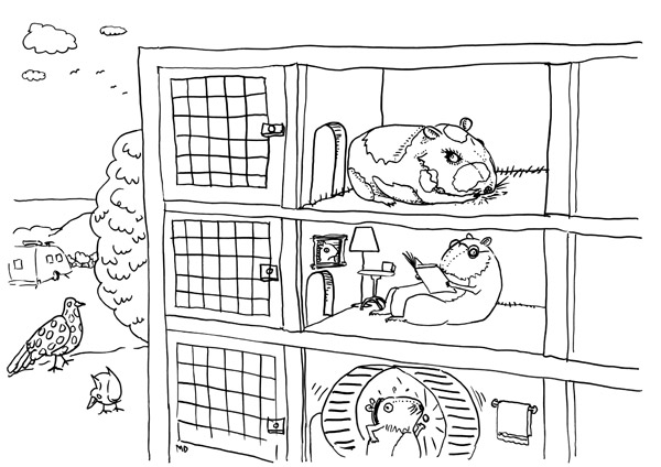 Guinea pig coloring pages free